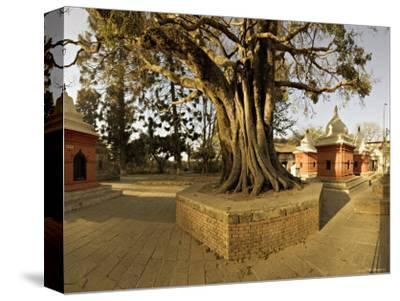 Panorama Produced by Joining Several Images, at One of the Holiest Hindu Sites, Kathmandu