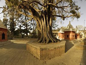 Panorama Produced by Joining Several Images, at One of the Holiest Hindu Sites, Kathmandu by Don Smith