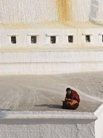 Tibetan Buddhist Monk Reading Scriptures at the Boudha Stupa at Bodhanath, Kathmandu, Nepal