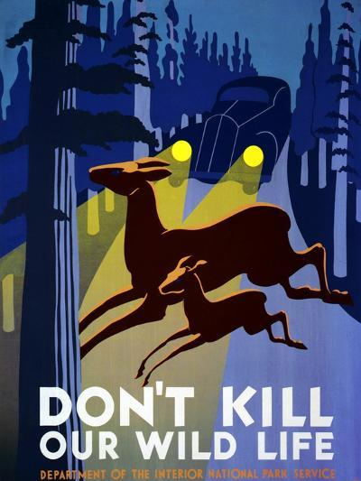 """""""Don't Kill Our Wildlife"""" , Department of the Interior, National Park Service, Washington. 1939--Giclee Print"""