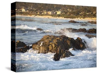 Rocky Coast Along Ocean Drive in Carmel, California, United States of America, North America