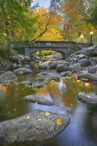 Ashland Creek In Fall by Donald Paulson