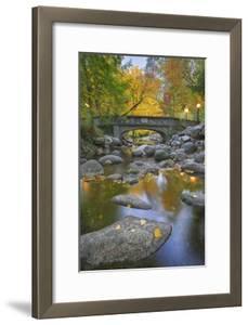Ashland Creek In Fall by Donald Paulson