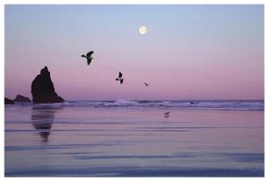 Canon Beach Sunset by Donald Paulson