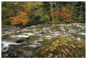 Cascade Mountains I by Donald Paulson