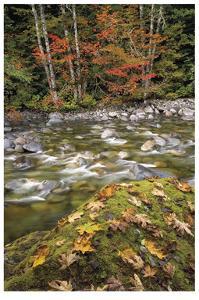 Cascade Mountains II by Donald Paulson
