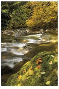 Cascade Mountains IV by Donald Paulson