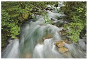 Cascade River by Donald Paulson