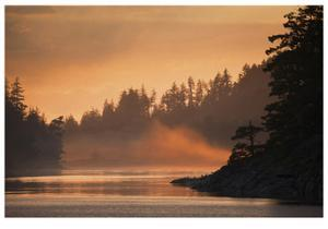 Glowing Mist by Donald Paulson