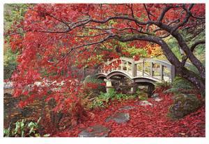 Japanese Gardens by Donald Paulson