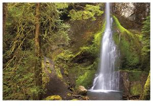 Marymere Falls II by Donald Paulson