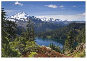 Mount Baker by Donald Paulson