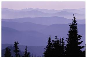 Mount Rainier Layered Hills by Donald Paulson