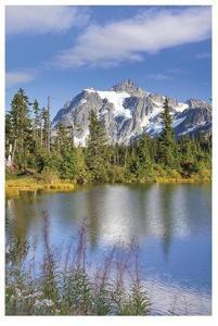 Mount Shuksan by Donald Paulson