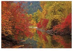 Nason Creek IV by Donald Paulson