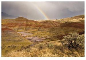 Painted Hills and Rainbow by Donald Paulson