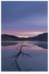 Painted Hills Lake at Dawn II by Donald Paulson