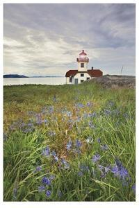 Patos Island Lighthouse I by Donald Paulson