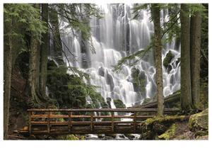 Romona Falls I by Donald Paulson