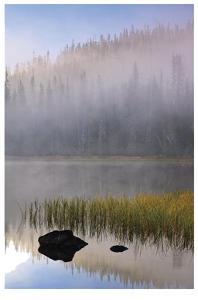 Scott Lake by Donald Paulson
