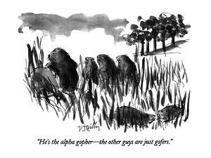 """""""He's the alpha gopher?the other guys are just gofers."""" - New Yorker Cartoon by Donald Reilly"""