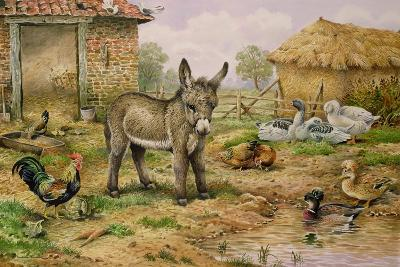 Donkey and Farmyard Fowl-Carl Donner-Giclee Print