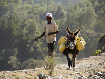 Donkey Carrying Water, Santo Antao, Cape Verde Islands, Africa-R H Productions-Photographic Print