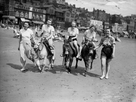 Donkey Derby--Photographic Print