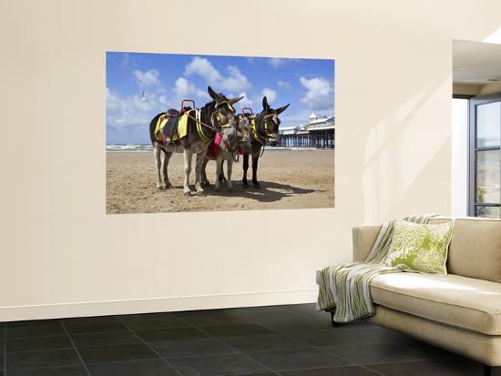 Donkey Rides on Blackpool Beach-Neil Setchfield-Wall Mural