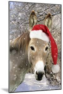 Donkey Wearing Christmas Hat in Snowy Scene