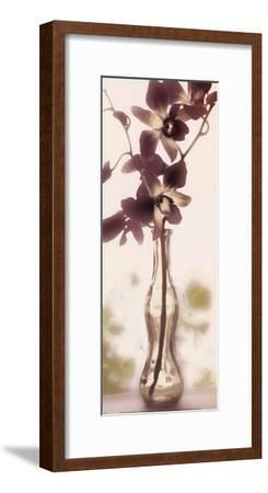 Charming Orchid