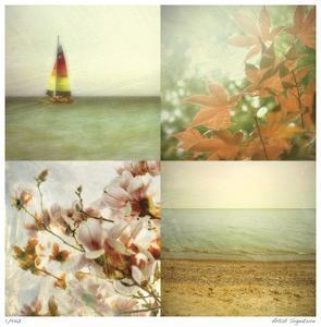 Coast Scenes 2 by Donna Geissler