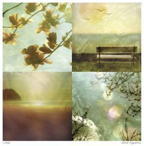 Coastal Scenes 1 by Donna Geissler