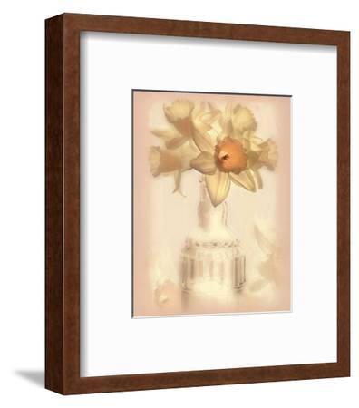 Lovely Daffodil