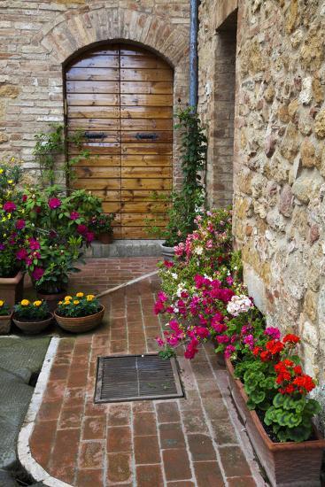 Doorway with Flowers, Pienza, Tuscany, Italy-Terry Eggers-Premium Photographic Print