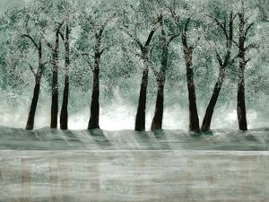 Green Forest 1 by Doris Charest