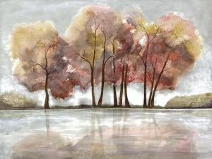 Lake Foliage by Doris Charest