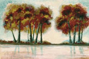 Peak Foliage by Doris Charest