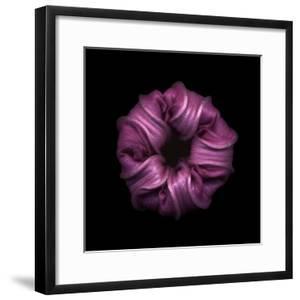 Darkness E3 - Purple Morning Glory Bud by Doris Mitsch
