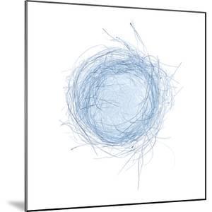 Light 5: Bird's Nest by Doris Mitsch