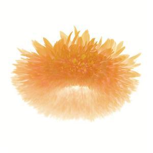Light 6: Sunflower by Doris Mitsch