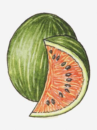 Illustration of a Slice of Watermelon and a Whole Watermelon