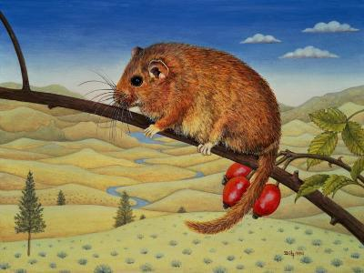 Dormouse Number Two, 1994-Ditz-Giclee Print