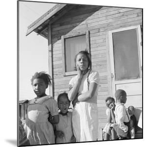 African-American family in California, 1939 by Dorothea Lange
