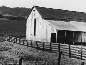 California Dairy Ranch by Dorothea Lange