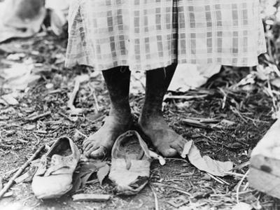 Cotton Picker, 1937 by Dorothea Lange