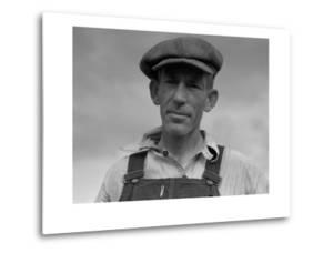 Father of Landless Sharecropper Family by Dorothea Lange