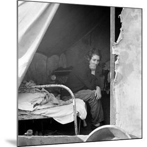 Migrant Worker, 1936 by Dorothea Lange