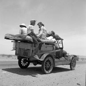 Migratory family traveling in search of work to New Mexico along U.S. Route 70, Arizona, 1937 by Dorothea Lange
