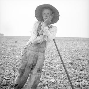 Poor white, North Carolina, 1936 by Dorothea Lange